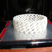 Makerbot_6066_build_IMG_6876